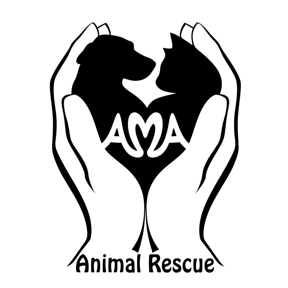 animal rescue Humane animal rescue continues the legacies of the animal rescue league & western pa humane society, bringing greater efficiency in animal care processes, staff training, and cutting-edge practices to one cohesive organization.