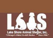 Best Pet Rescue | Chicago | Best4Pets